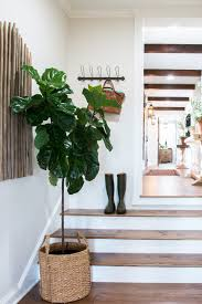 In House Plant Plants Of Season 4 Joanna Gaines Shares Her Fixer Upper Secret