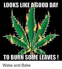 Wake N Bake Meme - 25 best memes about wake and baking wake and baking memes