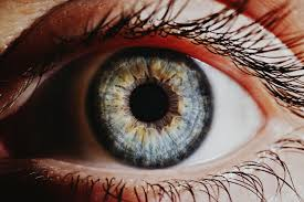 The Blind Spot In The Eye Is Due To Could These New Eye Drops Cure Cataracts Pbs Newshour