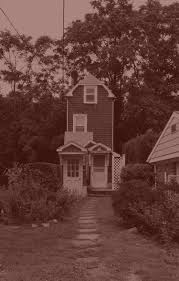 the skinny house