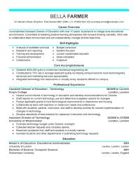 It Director Resume Examples by Resume It Director Free Resume Example And Writing Download