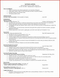 resume exle account executive resume resume format of accounts executive best of download advertising