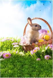 easter egg basket 2018 happy easter egg basket rabbit vinyl photography background