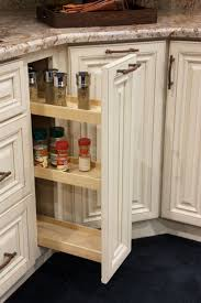 Roll Out Spice Racks For Kitchen Cabinets 31 Best Beautiful New Designs Images On Pinterest Cabinet