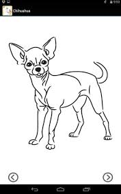 lets draw cats and dogs android apps on google play