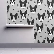 boston terrier small xtra small wallpaper by andrea lauren