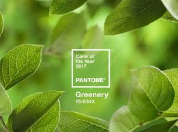 2017 colors of the year welcome greenery pantone color of the year 2017 furnishmyway blog