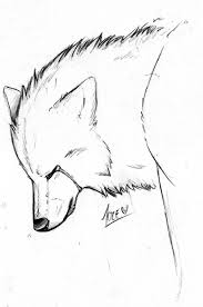 drawn howling wolf sad pencil and in color drawn howling wolf sad