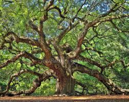 oak etsy
