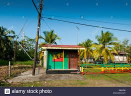 rastaman house on a beach of puerto viejo talamanca carribean