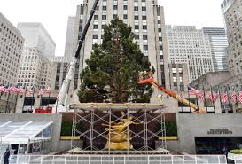 rockefeller center christmas tree lighting 2015 when and where to