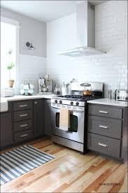 kitchen wonderful design your perfect kitchen dark cabinets