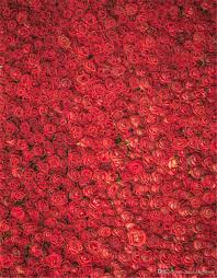 photo backdrops 2018 roses valentines day backdrops for photography
