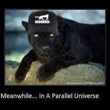 Puma Meme - puma meme by talalious memedroid