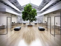 office with tree visarteam 3d visualization of exteriors and