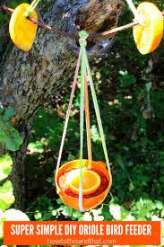 recipes crafts diy home garden