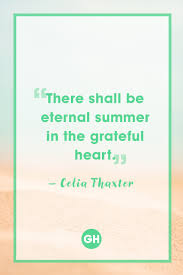 quotes about fall gardening 15 best summer quotes funny sayings about vacation