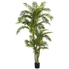 6 curvy parlor palm silk tree silk tree parlour and palm nearly natural curvy parlor palm plastic tree in pot