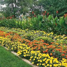 how to design a garden by plant height