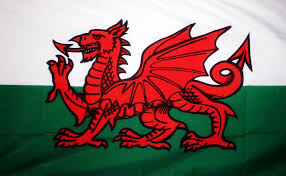 New South Wales Flag Wales Dragon 18 X 12 Flag