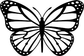 butterfly qygjxz