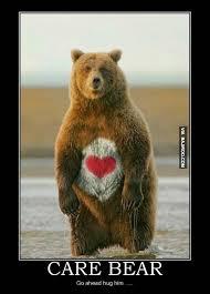 Meme Bear - 34 most funny bear meme pictures