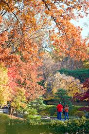Botanic Garden St Louis by Fall Getaway To St Louis Midwest Living