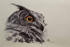 simple and big face of owl tattoo golfian com