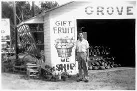 Ohio Gift Baskets Florida Honeybells Oranges Ruby Red Grapefruit U0026 Citrus Fruit