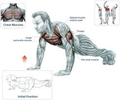 10 level push ups series for building ultimate strength the