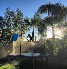 5 best trampolines and bouncers of 2017 imagination ward