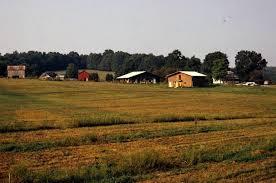twin oaks farms id twin twin oaks community is the most eccentric village in virginia