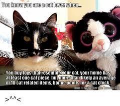 Cat Lover Meme - 25 best memes about cat clock cat clock memes