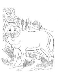 fox racing coloring pages desert animal coloring pages coloring free coloring pages