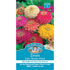 mr fothergill u0027s zinnia early wonder flower seeds bunnings warehouse