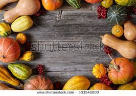 harvest thanksgiving background autumnal fruits gourds stock photo