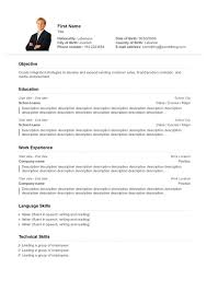example resume layout sample resume templates professional