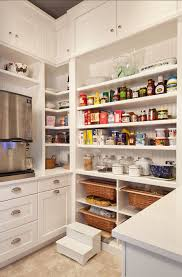 Kitchen Pantry Design Ideas by 142 Best Pantry Bar Images On Pinterest Kitchen Basement Ideas
