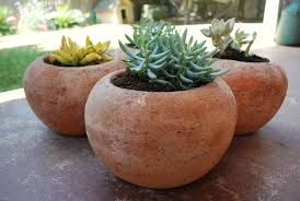 terracotta pots terracotta the invention of living