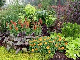 20 best perennial garden bed images on pinterest perennial