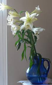 lilies such beautiful lilies from kitchen angels jpg