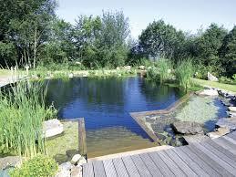 Poolanlagen Im Garten Schwimmteich Natural Pool Natural Pool Schwimmteich