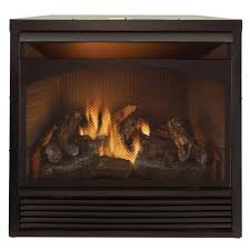 gas fireplace insert dual fuel technology with remote control