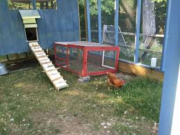 construction of our cold weather chicken coop pictures too