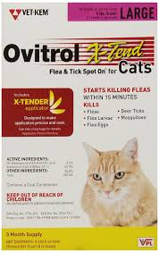 230 best flea and tick control images on pinterest tick control