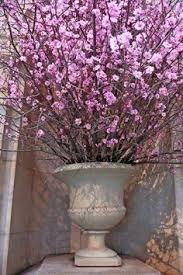 cherry blossom centerpieces for weddings cherry blossom