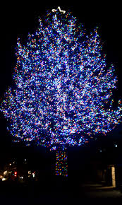 Lighted Outdoor Christmas Displays by Christmas Lights Category