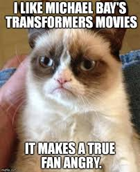 Angry Meme Cat - grumpy cat image gallery know your meme