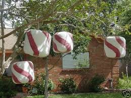 Best Christmas Decorations For Outside by 28 Best Christmas Candy Land Images On Pinterest Christmas Candy