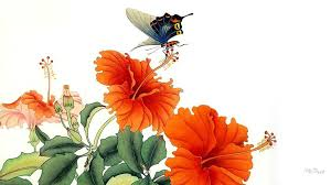 flowers flower butterfly painting flowers hibiscus blooms